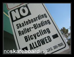 x_no skateboarding by serialxperiments