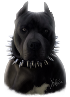 Black Blue Pitbull Portrait by RedEyedDemon