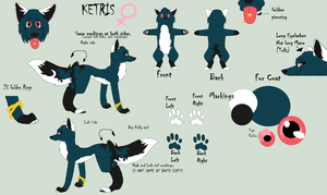 Ketris Reference 2013 by NorwegianFur