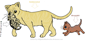Goldenwind And HoneyKit and Brownkit by BrownkitBrownclaw