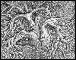 detail of center of old tree by JoeMacGown