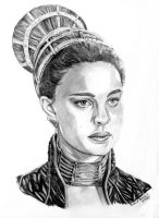 Padme Birdcage by khinson