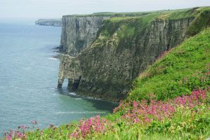 The Cliffs with Pink by Hitomii