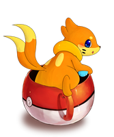 Buizel!! (Sinnoh Confirmed! (?)) by humphreywolf2012