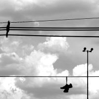 Wires IV by luiscds
