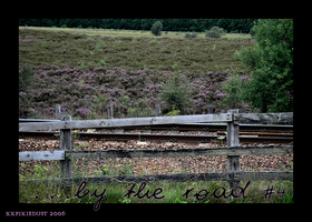 ...by the road - part IV by xxpixiedust