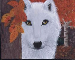 White Wolf by cheekygirl-1997
