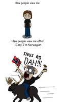 How people view me after I say I'm Norwegian by CyborgROX