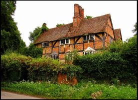 Tudor Cottage by parallel-pam