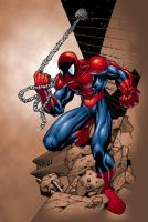 Spiderman by Pipin by pipin