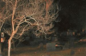 Ghost Photo II by BrownEyedWyldChyld