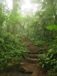 Costa Rica 5 by bleu-claire-stock