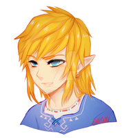 LoZ -- Link's long hair by onisuu