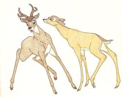 BAMBI AND FALINE by FERNL