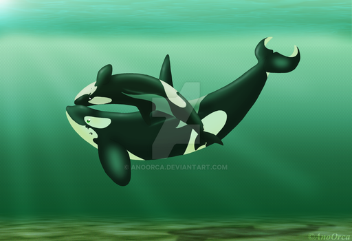 Gift - Orca Cuddles Redux by AnoOrca