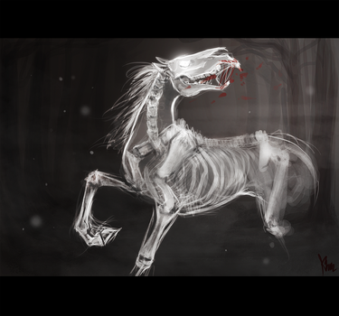 ghost horse by radacs