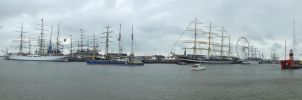 the tall ship races by damenster