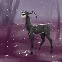 First snow by ForeignButterfly
