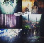 forest texture pack  - l u s graphic by lusG