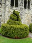 Priory Topiary 4 by GRANNYSATTICSTOCK