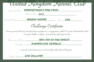 RBK Top of the World - Challenge Certificate #3 by TheChiefofTime
