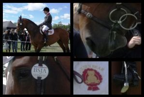BSJA Stally by HKW1994