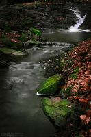 As the brook goes... by ivya-cz