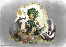 Pathfinder - Druid by TimKings-Lynne