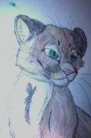 Cougar Colored Pencil by FoolsCourage