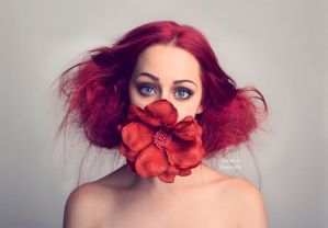 Bloom2 by fae-photography