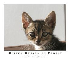 Kitty Keries by Fenriz by pussypatrol