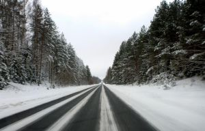 the road to white hell by Venedon