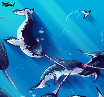 Waltz of Whales by canned-sardines