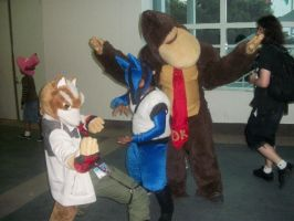 AX10: Fox Lucario and DK by Sonicbandicoot