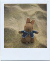 Peter Rabbit by MaryJosephine