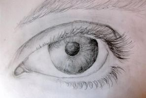 eye close-up by Liat53