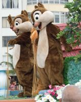 Chip 'n' Dale by melissa-andrade