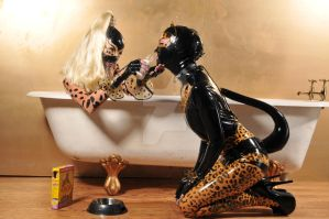 bath time for kitties by orangesnapper