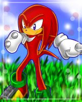 Knuckles the Echidna by Chibi-Nuffie