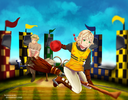 Quidditch tryouts by kentarocks