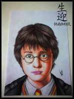 Harry Potter by LucasTsilva