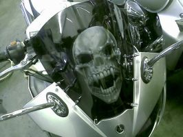 airbrushed skull windscreen by Jonny5nLala