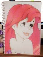 The Little Mermaid by Keuker