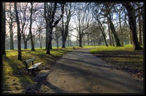 Walk in the Park by mym8rick