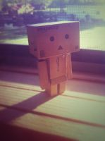 Danbo Is A Morning Person by GeekInDisguise