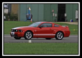 GT Mustang by lizzyr