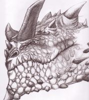 Pen rendition of 'Sloth'Dragon by The-Sane-Will-Die