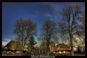 thatched house... by Lecosa