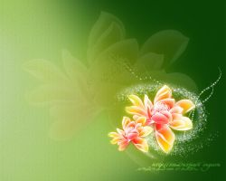 Shining Lotus 1280 by cicilene
