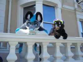 Fur Meet 2013 - Welcome To Our New House by InsaneSpyro
